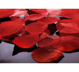 Płatki róż PŁRD100-082
