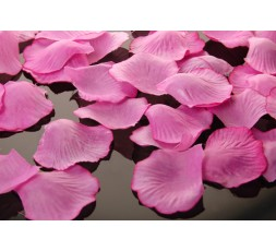 Płatki róż PŁRD500-081