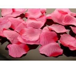 Płatki róż PŁRD100-081